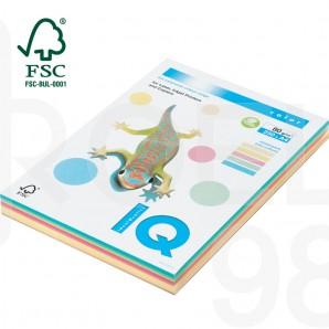 Копирна хартия IQ, пастел, 5 цв.x 50 л.,А4